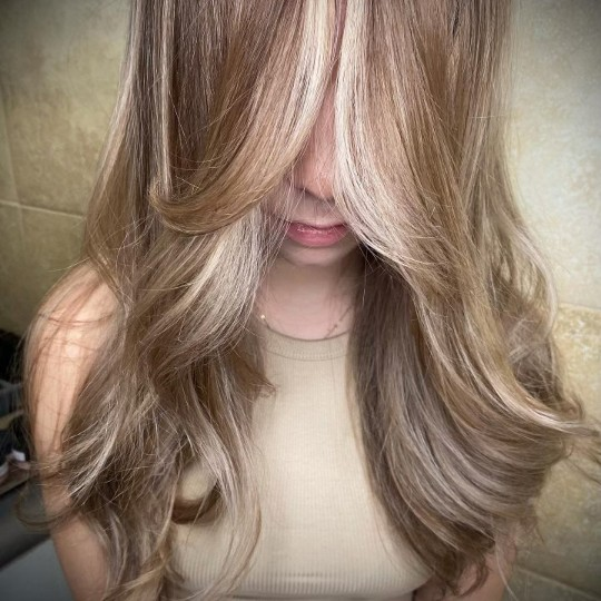 Ania Hair Salon_ Albany-NY_light brown hair